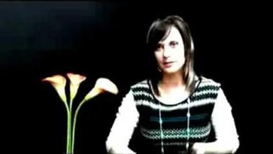 Photo of Christine DClario: Entrevista Nuevo Disco