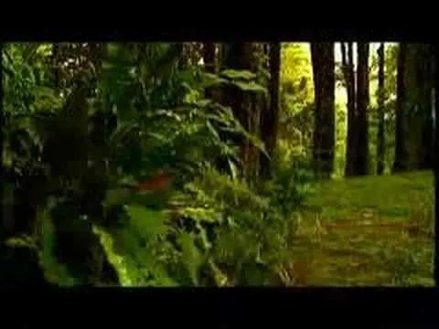En este momento estás viendo Jennifer Salinas – Video: Te Creere