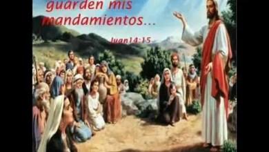 Stanislao Marino - Eran 100 ovejas