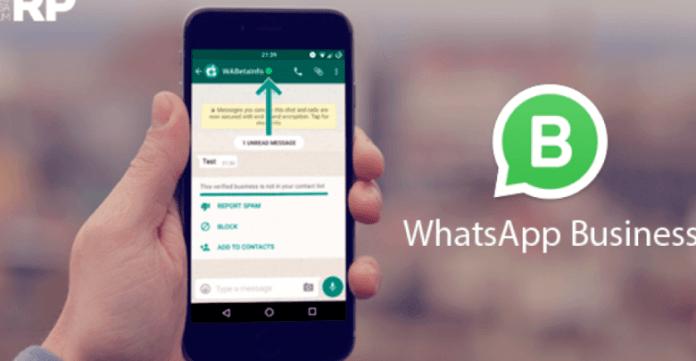 Télécharger WhatsApp Business APK 2