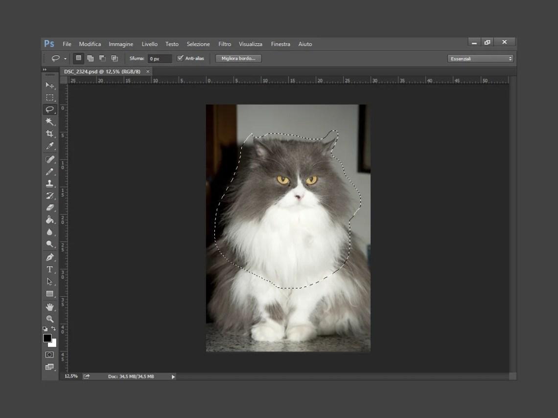 Strumento lazzo di Photoshop