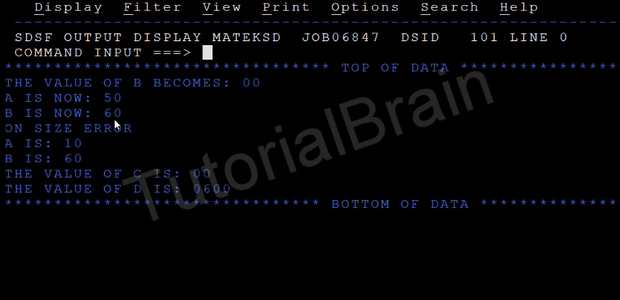 TutorialBrain-Output of the Different types of MULTIPLY Statements
