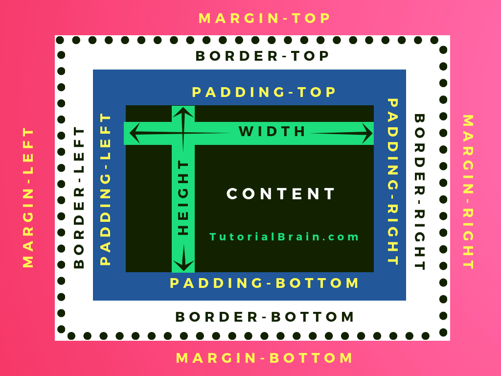 CSS box model displaying content, padding, border and margin