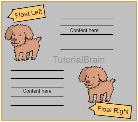CSS Float — TutorialBrain