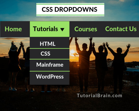 CSS DROPDOWNS