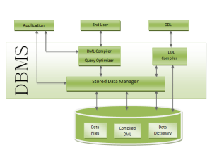 Structure of DBMS  Structure of Database  Structure of Database Management System