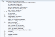 SAP Reference IMG - SAP Implementation Guide