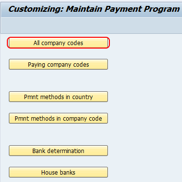 maintain payment program SAP