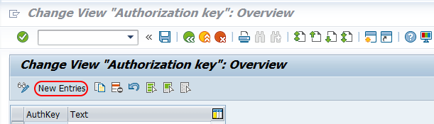 Maintain authorization key in SAP