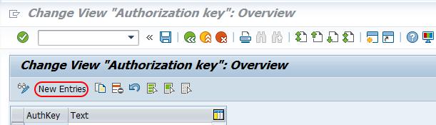 Maintain authorization key in SAP