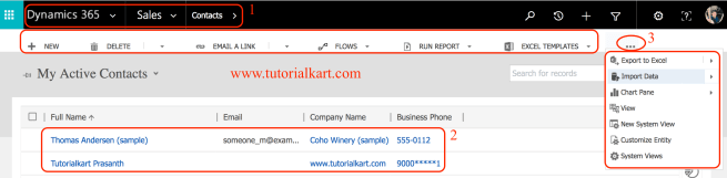 Customize a record in Dynamics 365