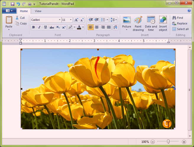 wordpad-showing-insert-picture