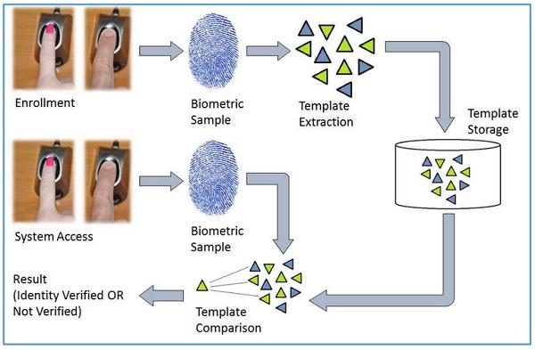 Identification and Verification