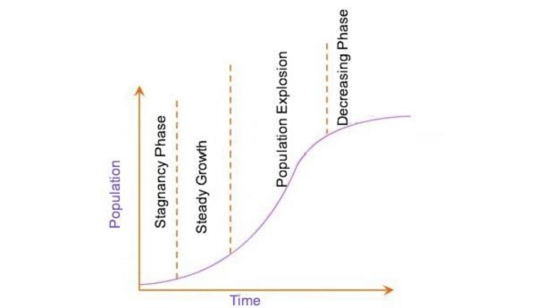 Phase of Population Growth