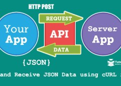 POST and Receive JSON Data using cURL in PHP