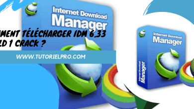 IDM 6.33 build 1 Crack