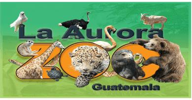 logo del zoológico la Aurora con varios animales