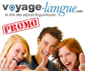 Voyage-Langue.com : des séjours linguistiques avec job inclus