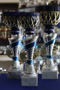 coppe tazza oro blu