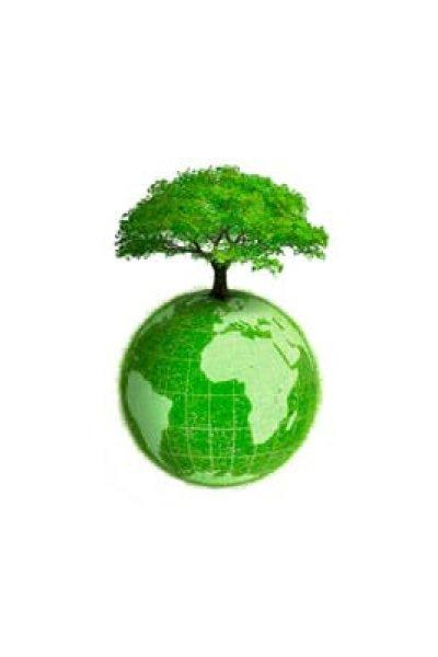 alimenti per la prevenzione del cancro: pomodori