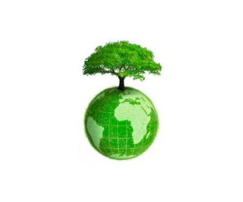 aliemnti ricchi di beta-carotene