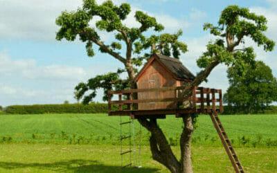 Una Piccola Casa Da Affittare O Comprare E La Consegna è