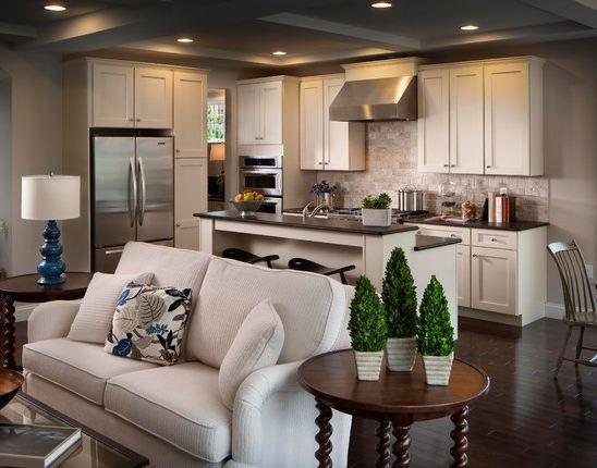 Progettare e arredare un soggiorno in stile moderno può nascondere delle insidie: Ambiente Unico Soggiorno E Cucina Background Fundomega1 Com