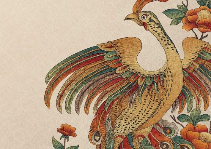 """illustrazione di copertina del libro """"Il corvo e il pavone"""""""