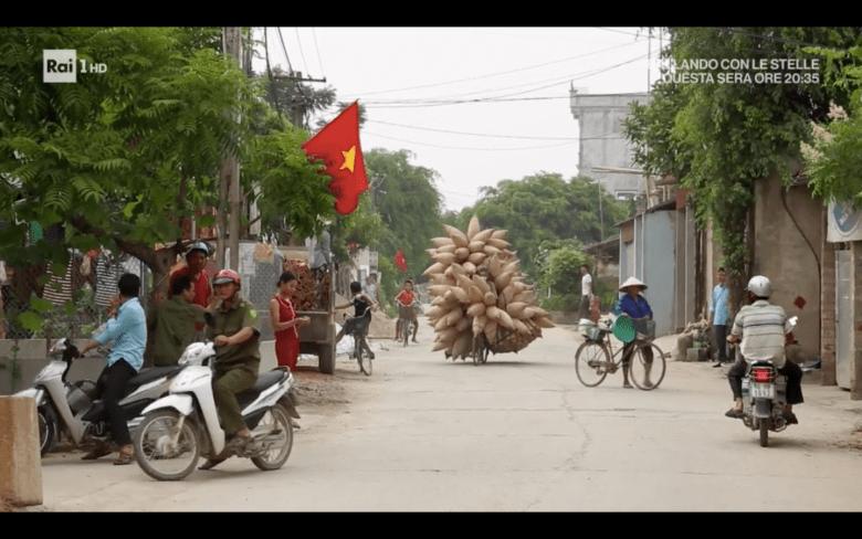 trasporto del bambu in Vietnam in bicicletta