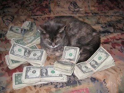 gatto eredità