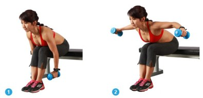 Image result for Bent Over Lateral Arm Raises