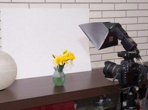 Fotoshooting mit einer Lilie