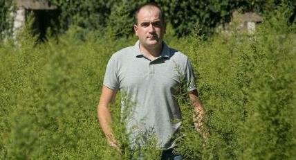 NJEMAČKI ZNANSTVENICI: 'Biljka koja raste u Hercegovini liječi koronu'