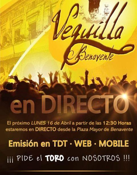 Veguilla 2012 TELEVISION BENAVENTE