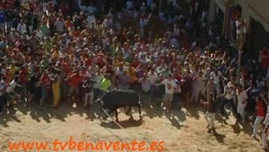 Photo of LA HOSTELERÍA SERÁ INSPECCIONADA DURANTE LAS FIESTAS DEL TORO ENMAROMADO DE BENAVENTE