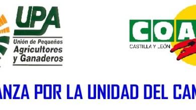Photo of UPA-COAG EN CONTRA DEL CIERRE DE LAS UNIDADES VETERINARIAS