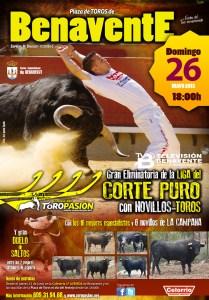 cortes 2013 cartel