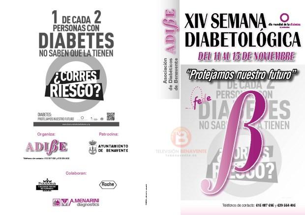 adibe 2013 1