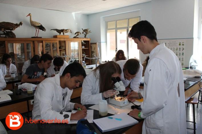 Alumnos observando la almeja asiática
