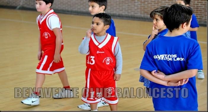 benavente club baloncesto2