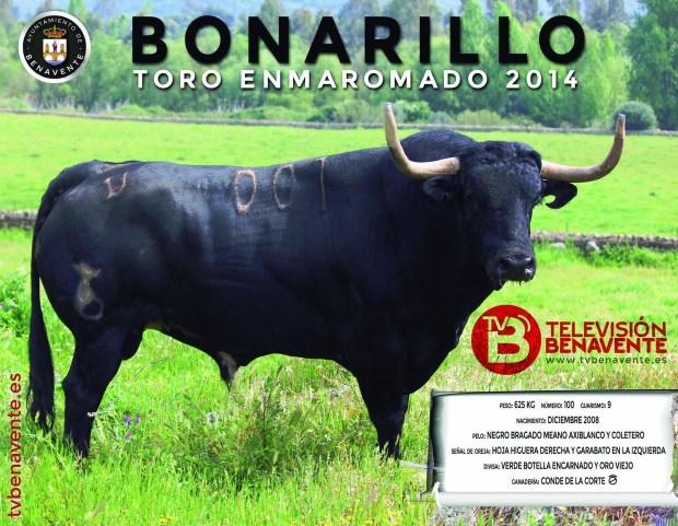 bonarillo toro enmaromado 2014 benavente postal