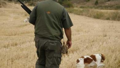 Photo of El próximo domingo se realizará la apertura de la temporada general de caza en Castilla y León
