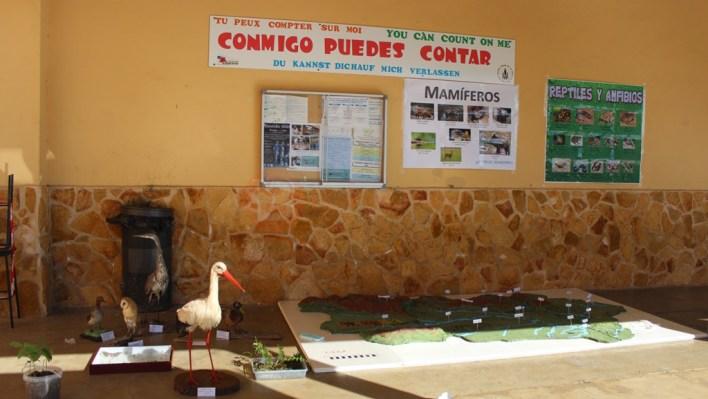 Maqueta de la comarca y aves