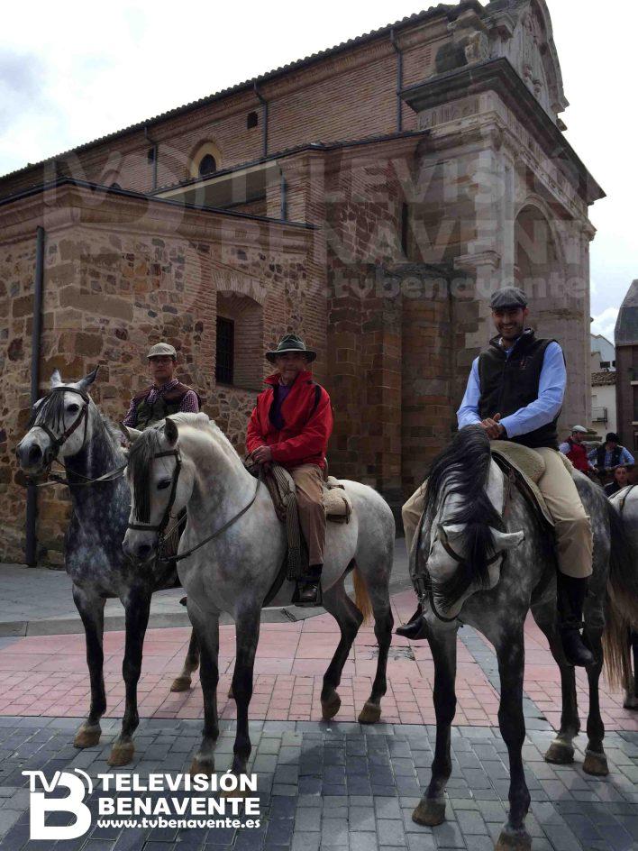 dia del caballo 2015 Benavente 10