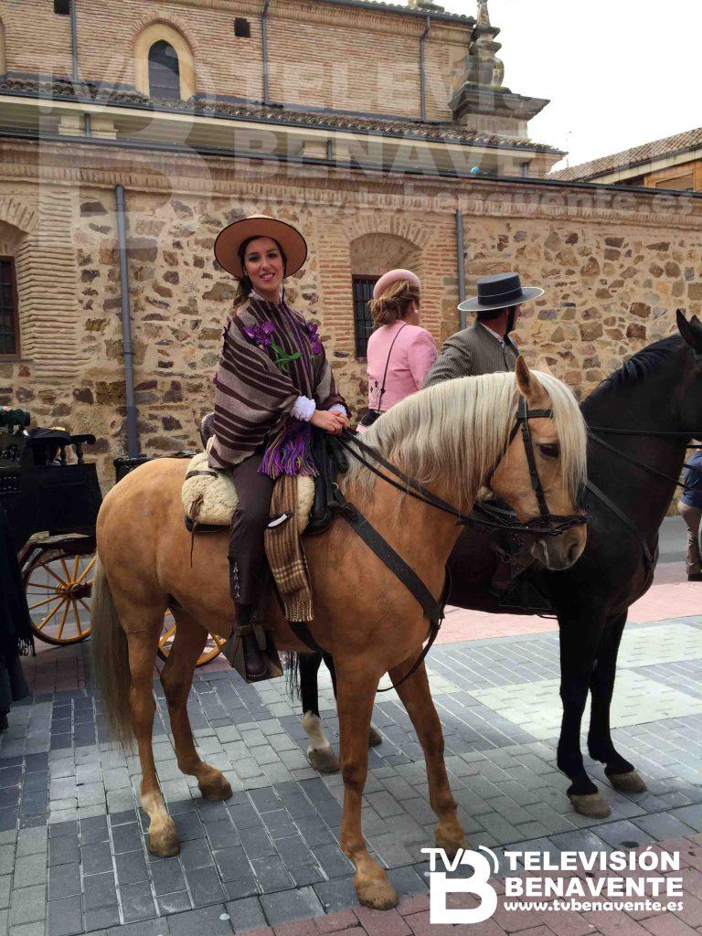 dia del caballo 2015 Benavente 15