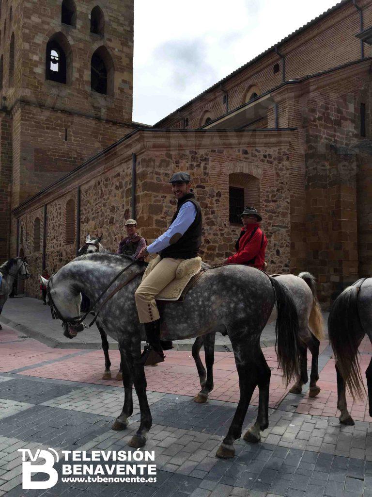 dia del caballo 2015 Benavente 9