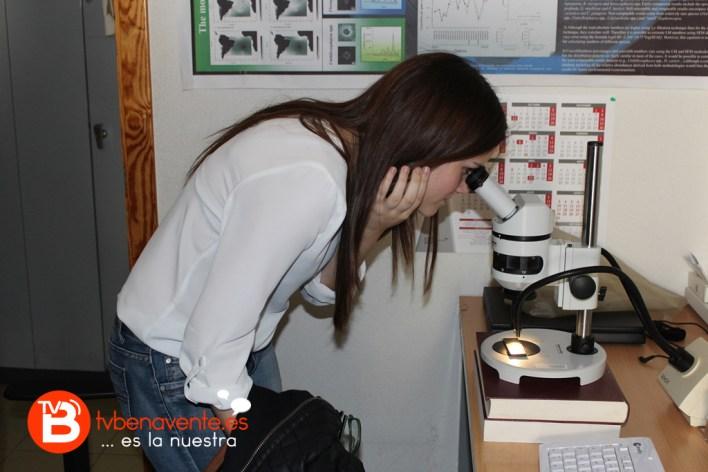Julia observando foraminíferos con la lupa binocular