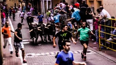 Photo of Fotografías de la Vaca de la Sangría y encierros jueves – Benavente 2015