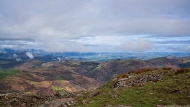 Photo of Los montes de Zamora recibirán más de 820.000 euros para su conservación y mejora