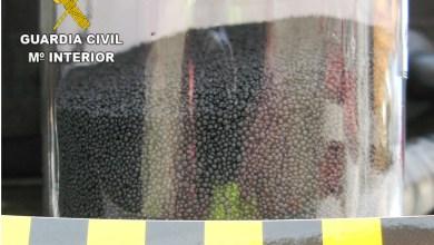 Photo of El SEPRONA de Zamora incauta un producto fitosanitario retirado del mercado por su alta toxicidad
